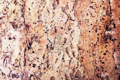 legno sughero