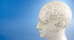 schizofrenia, terapia riabilitativa, psichiatria