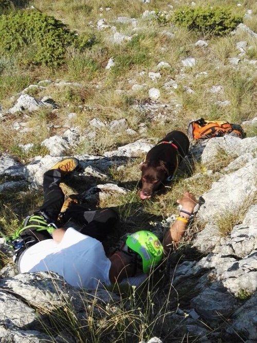 Un uomo a terra con un elmetto e un cane