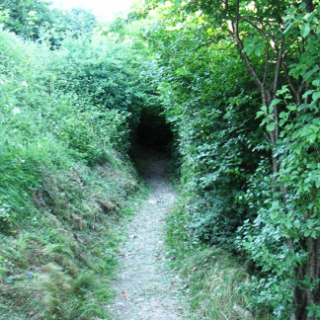 Sentiero per il Santuario di Santa Maria del Giogo