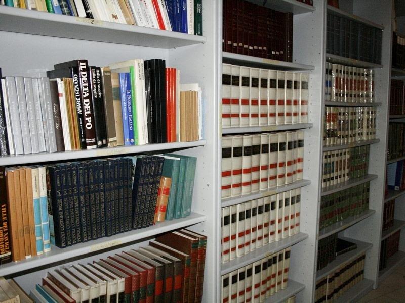 Dettaglio biblioteca