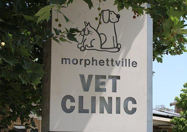 morphettville veterinary clinic stone signage