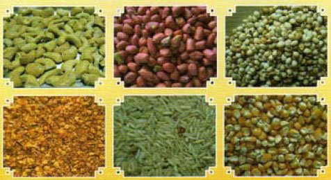 Aflatoxins can infect crops including corn, peanuts,  coffee beans, rice, wheat, barley and others
