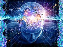 Neurotoxicity
