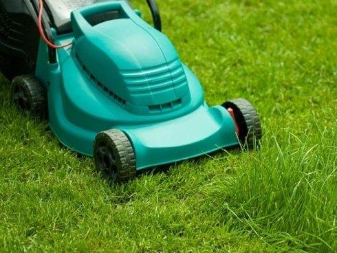 Chiedi consiglio al personale sulle soluzioni migliori da adottare per una corretta manutenzione del proprio giardino.