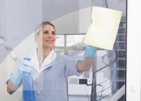 Lavaggio vetri B.C.