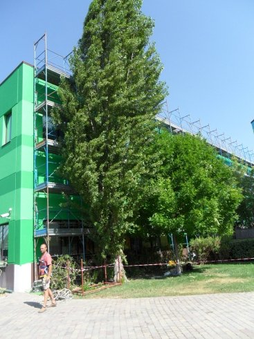verniciature edili, manutenzioni