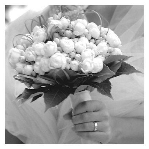 bouquet di tulipani da sposa