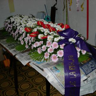 allestimento gerbere rosa e anthurium per cofano funebre