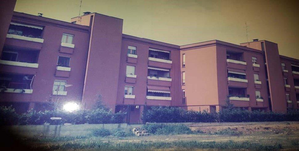 Blocchi di abitazioni di tre impianti di colore mattone , protetto con muro esterno circondato da arbusti