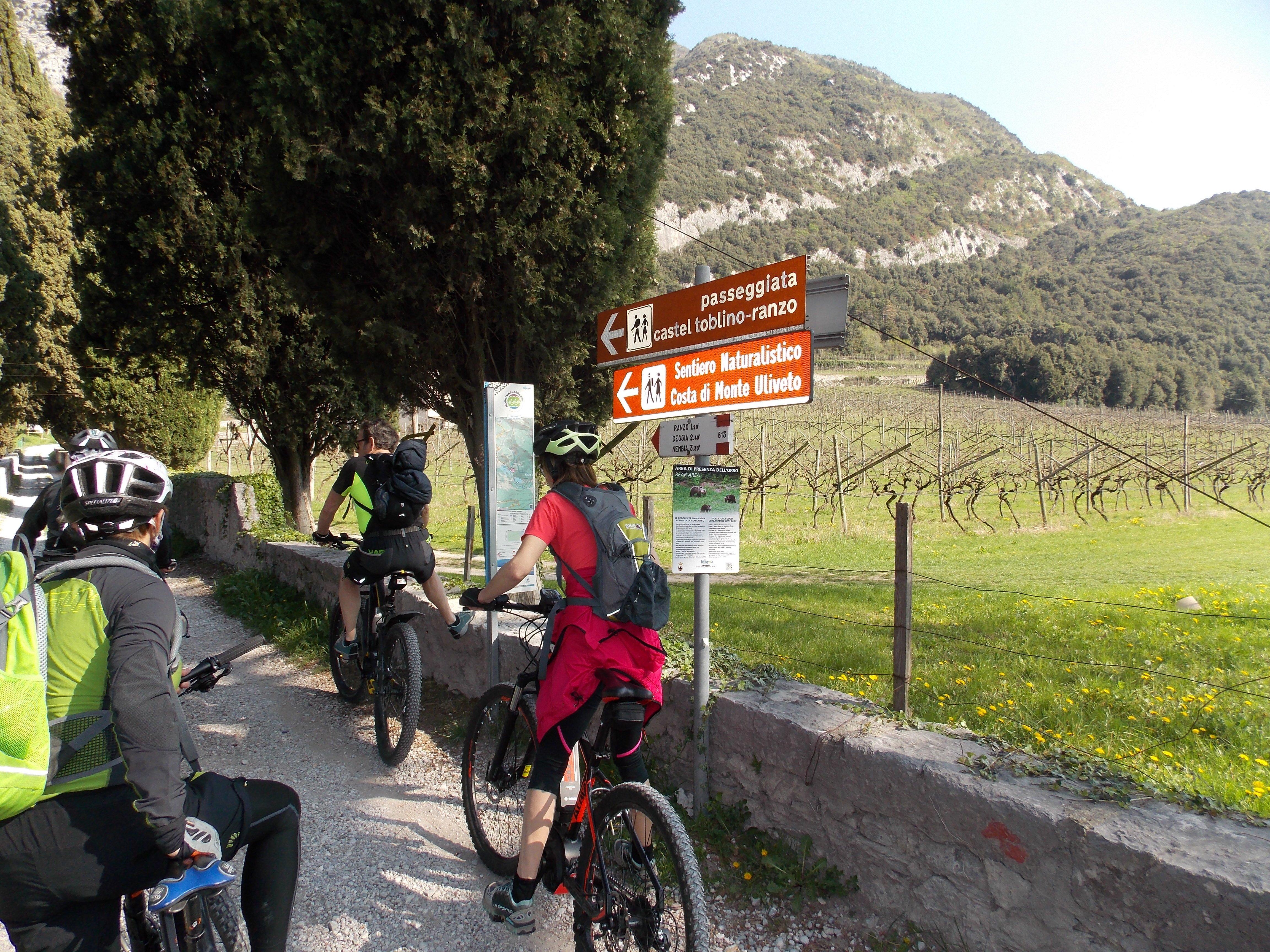 Ragazza in mountain bike su strada sterrata