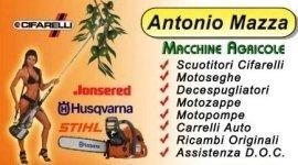 scuotitori olive