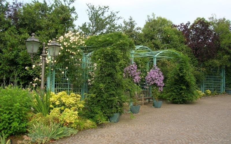 strutture per piante