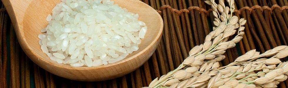 prodotti a base di riso