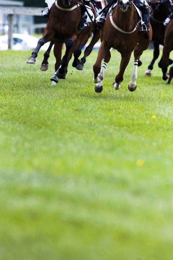 Horse Racing Tips Australia