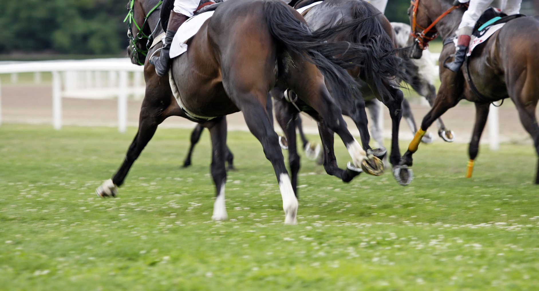 Thursdays Free Horse Racing Tips