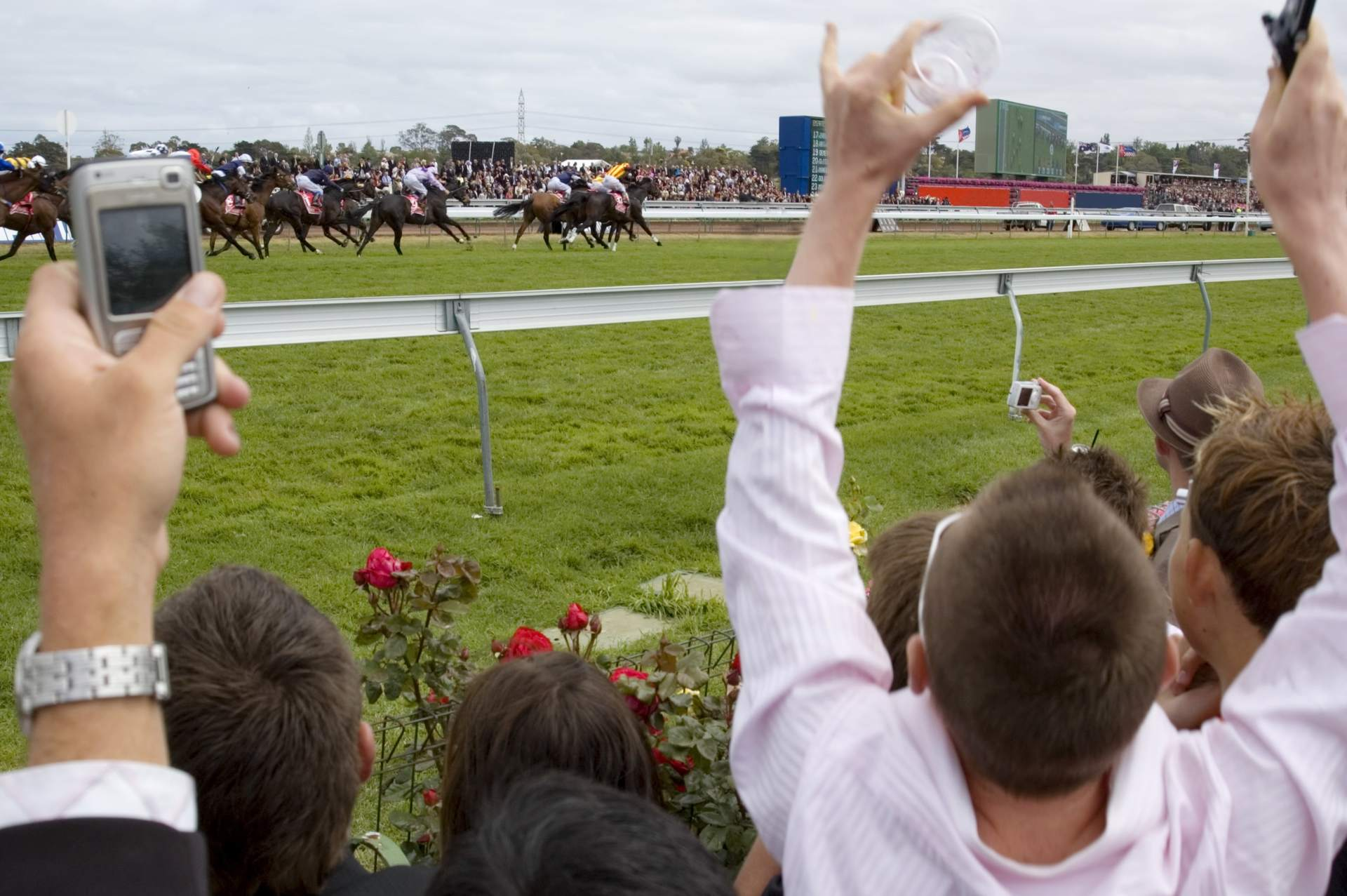Horse racing betting: Terms, tips, and explanations ...