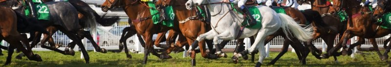Saturdays Horse Racing Tips