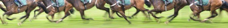 Fridays Horse Racing Tips