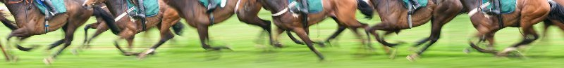 money management horse racing