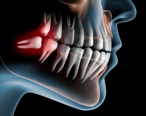 Odontostomatologica