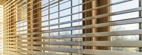 d blinds window blinds