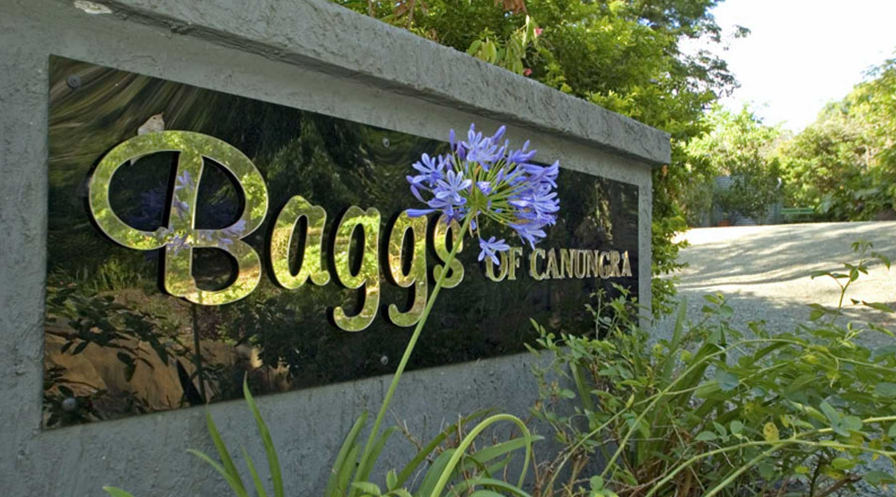 Baggs of Canungra