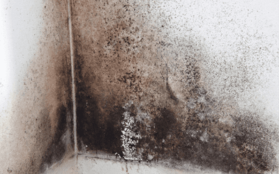 condensation on wall