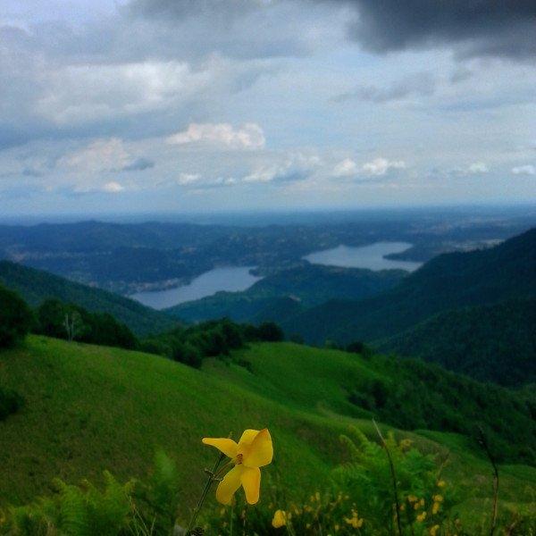 vista di una distesa di prati e vista di una valle