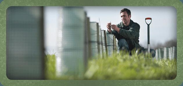 Hydroponics specialists - Liverpool - Greenleaf Systems Ltd - Man planting