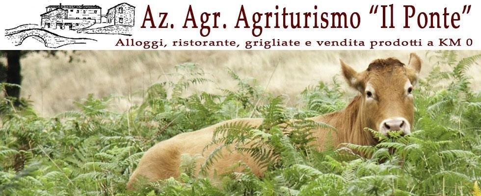 azienda agricola agriturismo il ponte