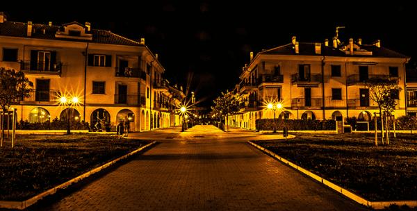 Le magnolie di notte2