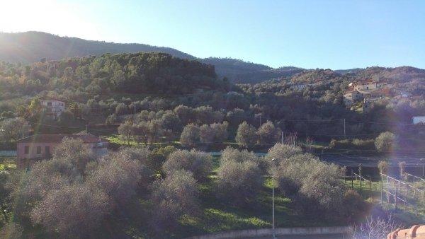 casa d4 int 15 residenza le magnolie andora liguria mansarda bilocale immerso nel verde.jpeg