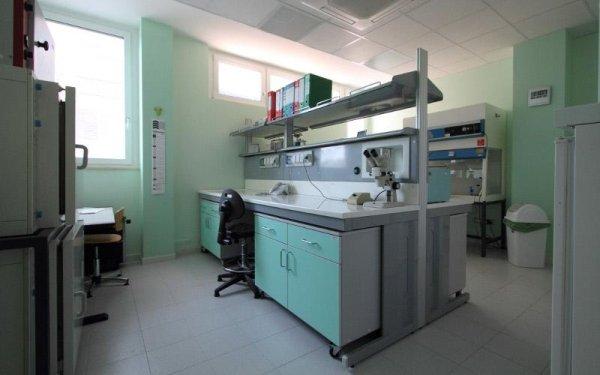 studio laboratorio