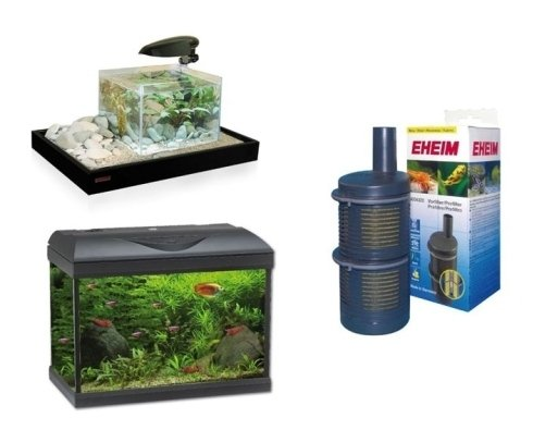 Qui puoi trovare tutto quello che ti serve per il tuo grande o piccolo acquario e per i tuoi pesci.