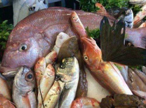 pesce fresco selezionato