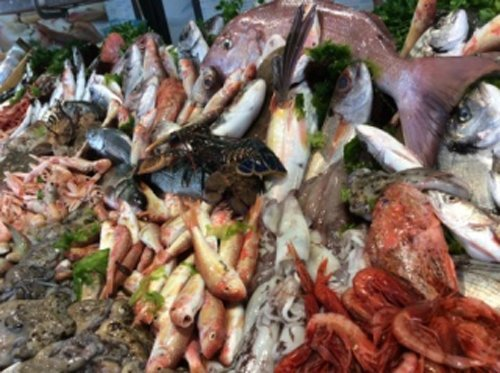 assortimento pesce fresco