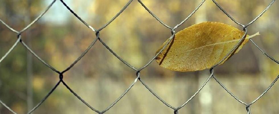 zotti recinzioni lugo
