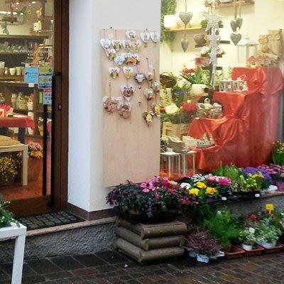Vista dall'esterno di una fioriera con dei vasi di piante appoggiati davanti la vetrina