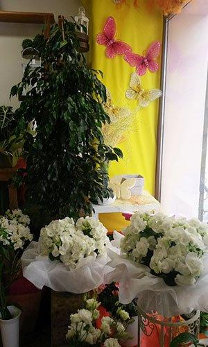 Dei bouquet di fiori bianchi, una pianta di ficus e decorazioni con farfalle su un muro