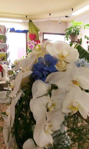 Un bouquet di orchidea bianche e fiori di color blu