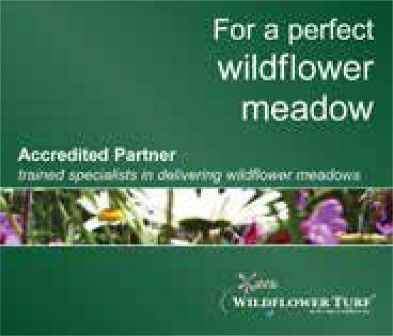 wildflower accreditation logo
