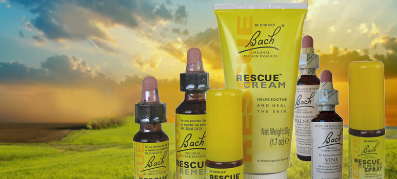 rescue cream bach flower essences remedy body calm