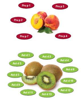 Allergia al kiwi e all'albicocca