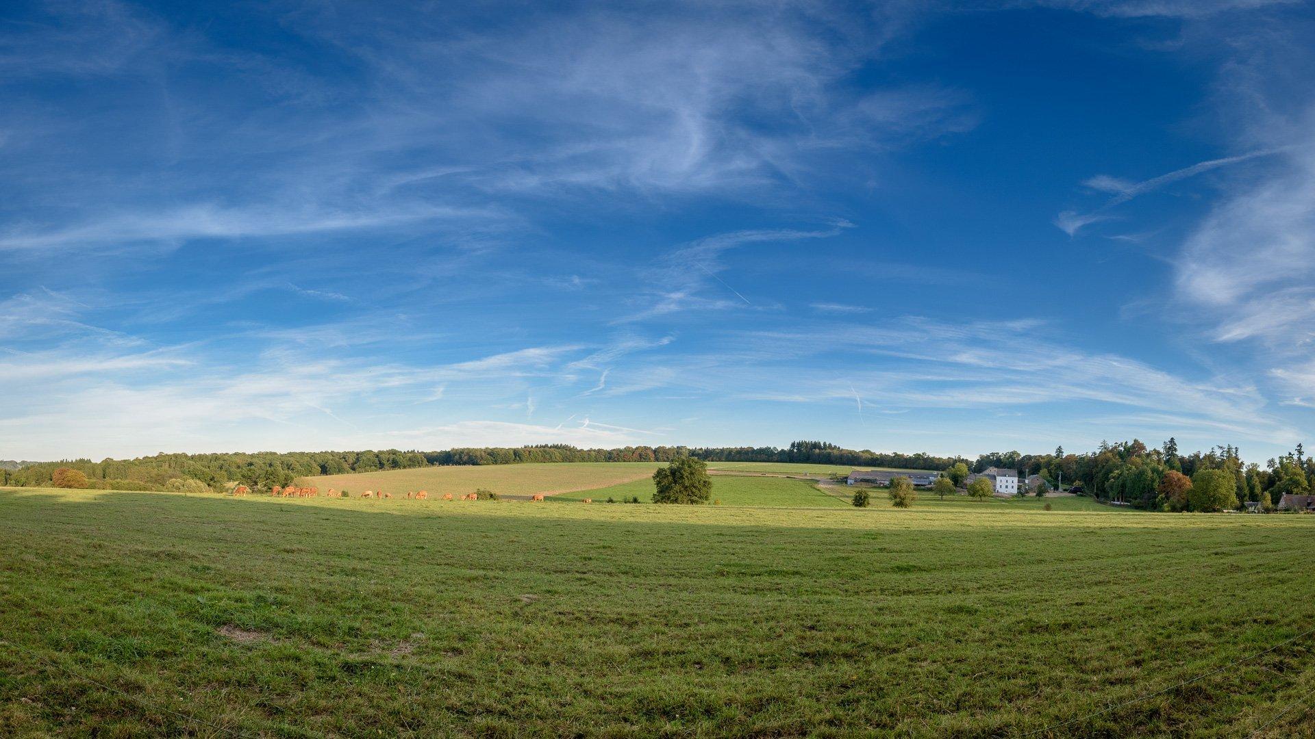 Maison forestière tout confort aux abords de l'Ardenne.