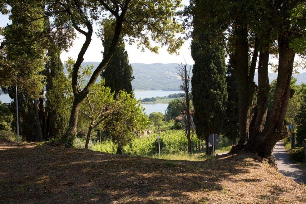 Parco della villa con scorci panoramici