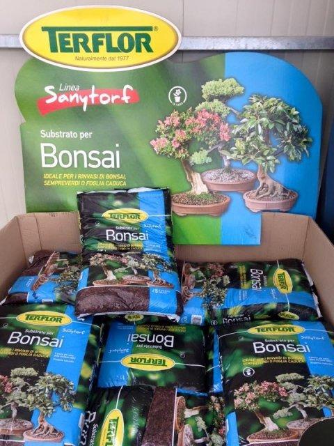 terriccio per bonsai