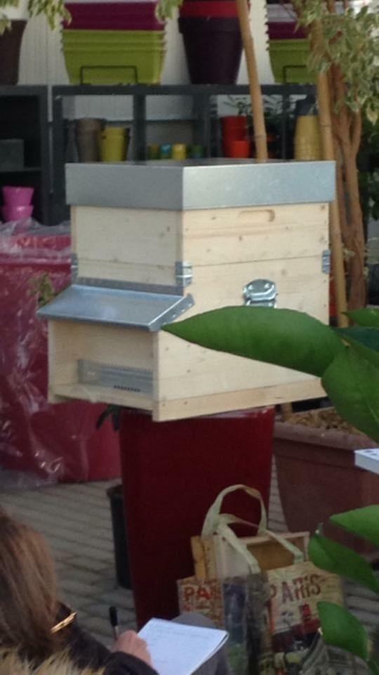 26 novembre corso apicoltura