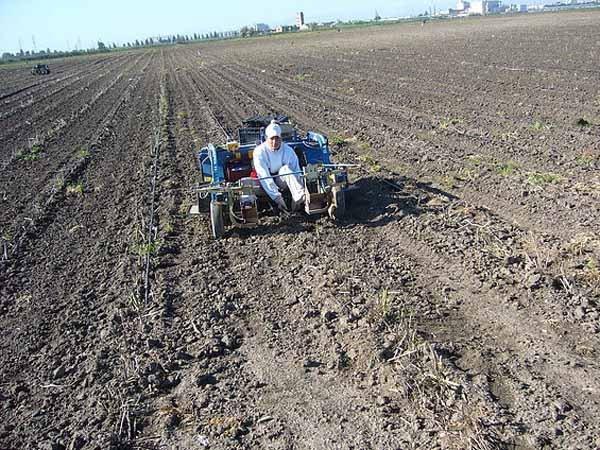 operaio con macchinario mentre lavora in un campo