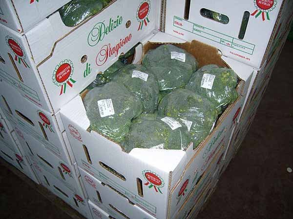 broccoli confezionati